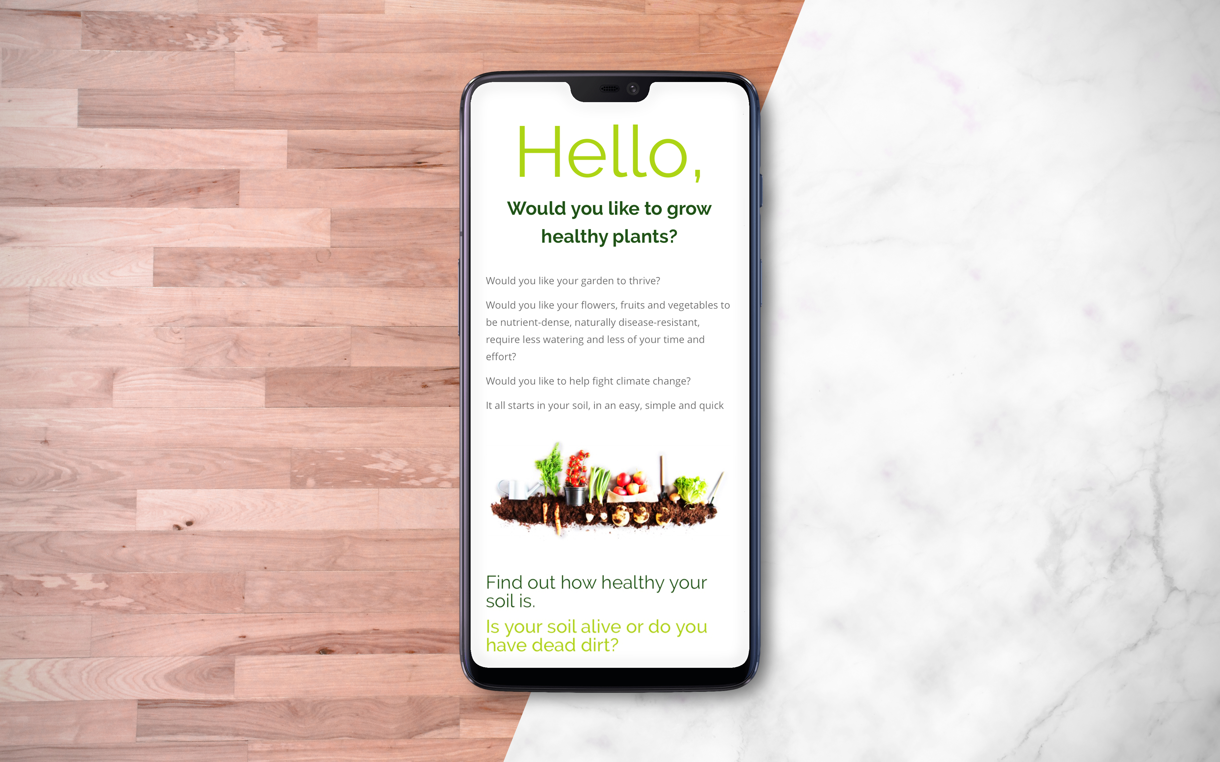 Soild Health phone mockup